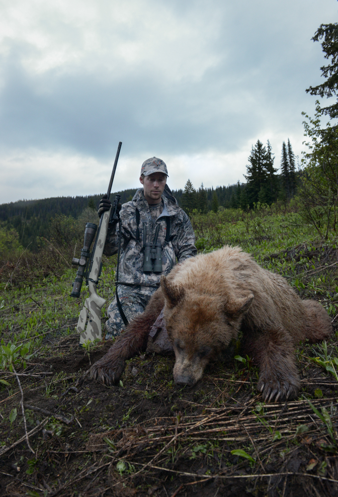 black, bear, blonde, idaho, montana, wild, spring, hunting, snowy mountain rifles, vortex, optics, sitka, gear