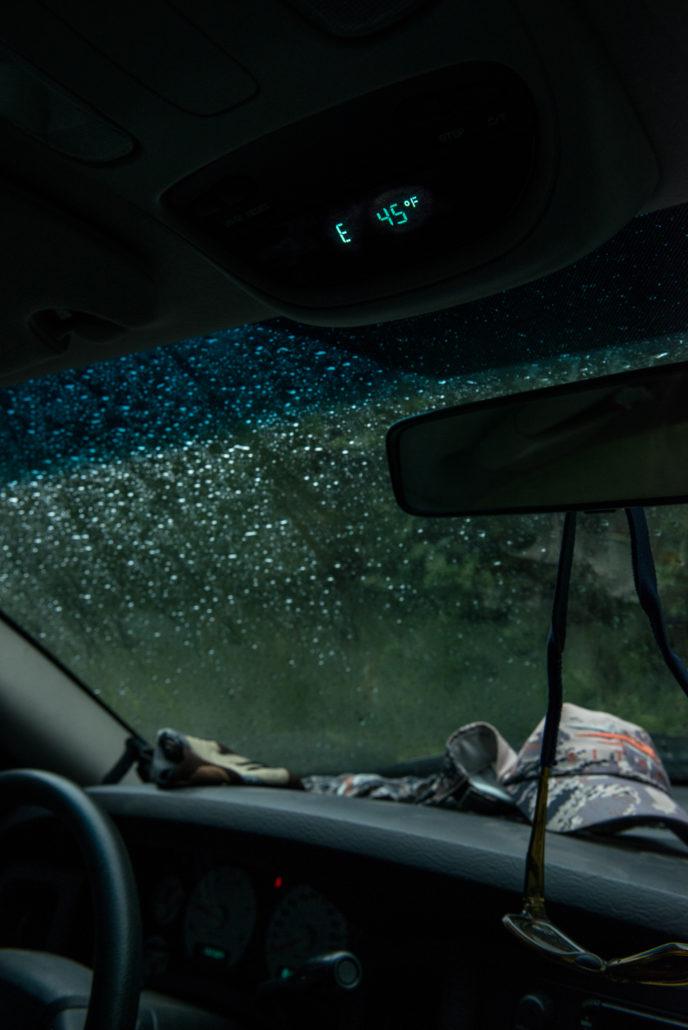 Rain, sitka