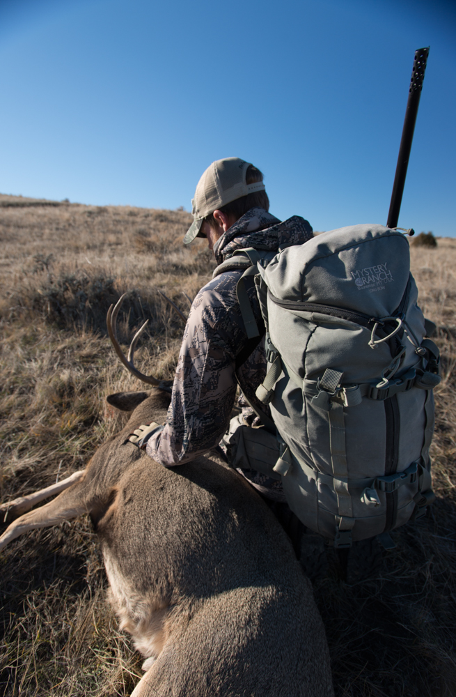 hunting, montana, wild, mule, deer, vortex optics, eastern