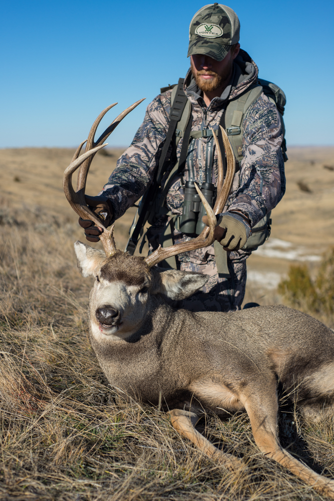 zack, boughton, montana, mule, deer, buck, 2013, wild, vortex optics