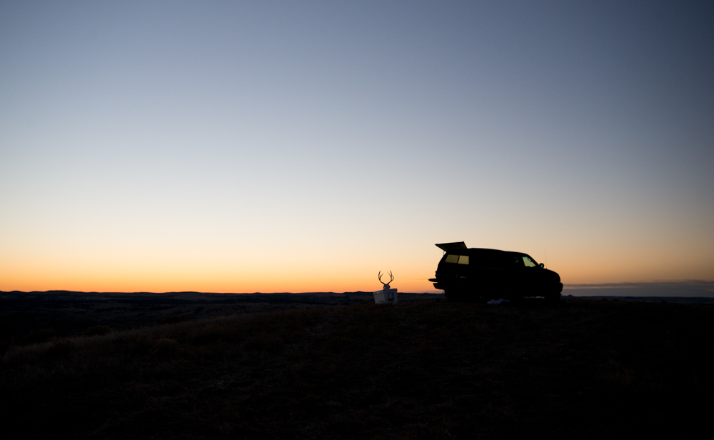 hunting, montana, wild, mule, deer, vortex optics, eastern, sunset, ford, f150