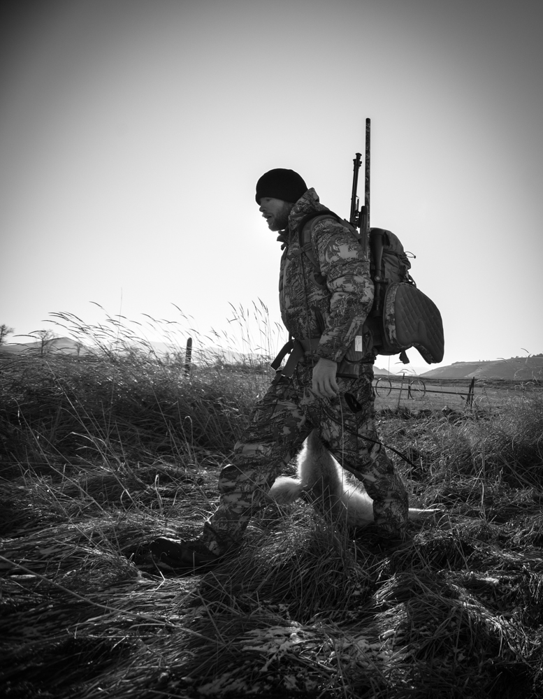 coyote, hunting, montana, wild, snow, hunting, sitka, vortex