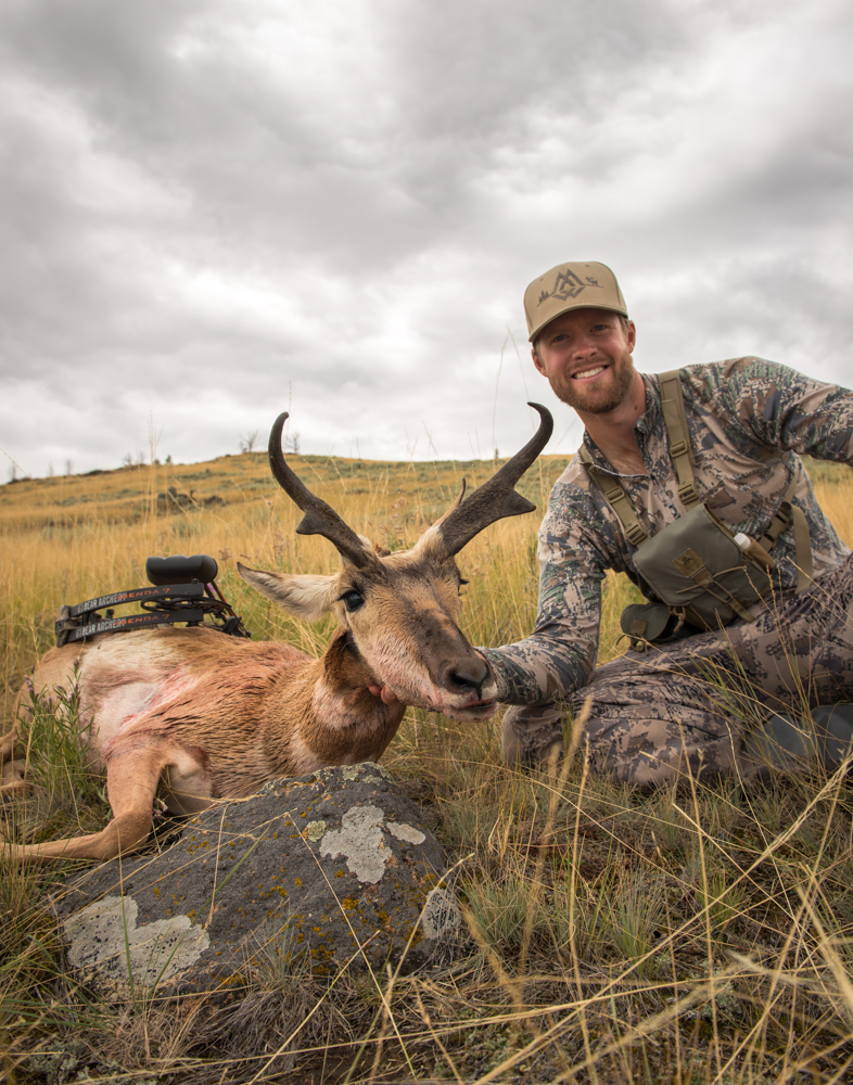 antelope, hunting, montana, wild, archery, sitka, bear archery, vortex optics