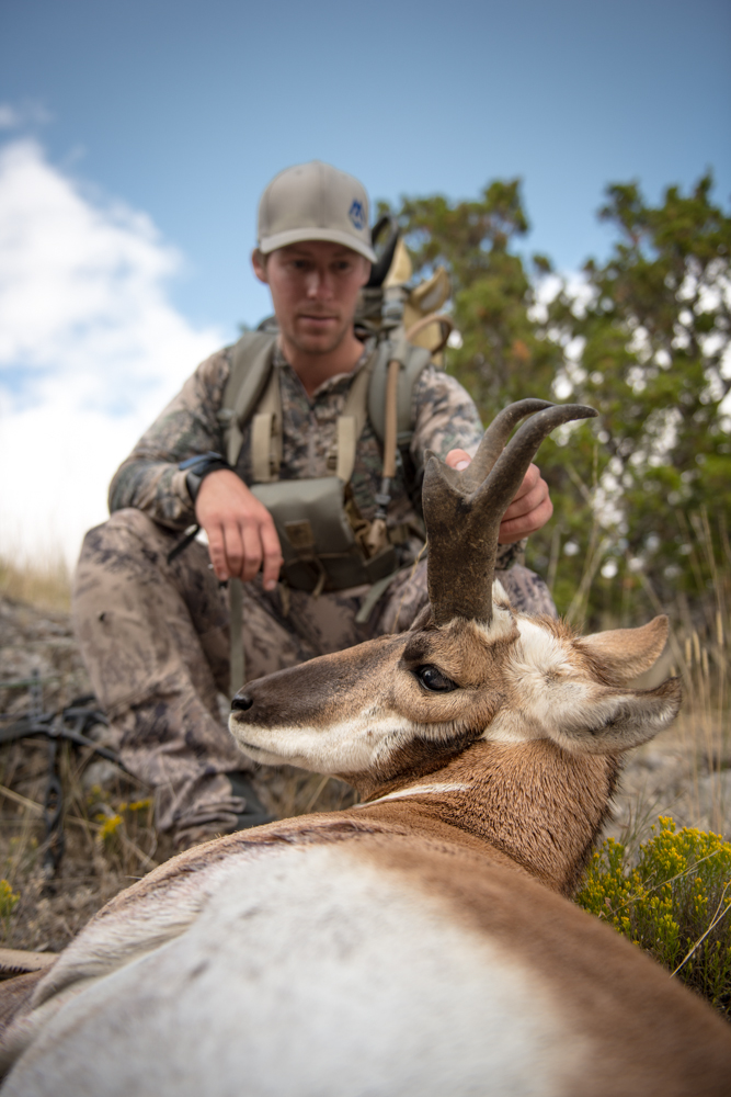 antelope, hunting, montana, archery, video, montana wild