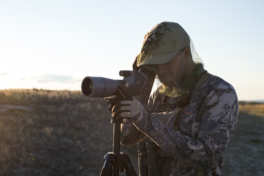 mosquitoes, elk, hunting, montana, vortex optics
