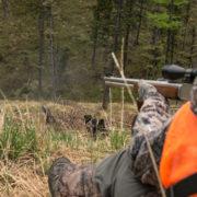 black, bear, hunting, montana, idaho, rifle, lever, action