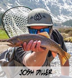 Josh Diller
