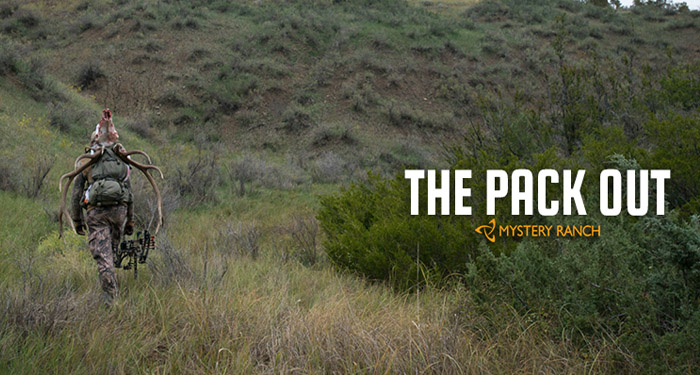 pack, out, elk, quarter, quartering, gutless, method, montana, wild, hunting, bowhunting