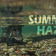 Summer Haze, Fly, Fishing, Montana, Wild, cutthroat, trout, simms
