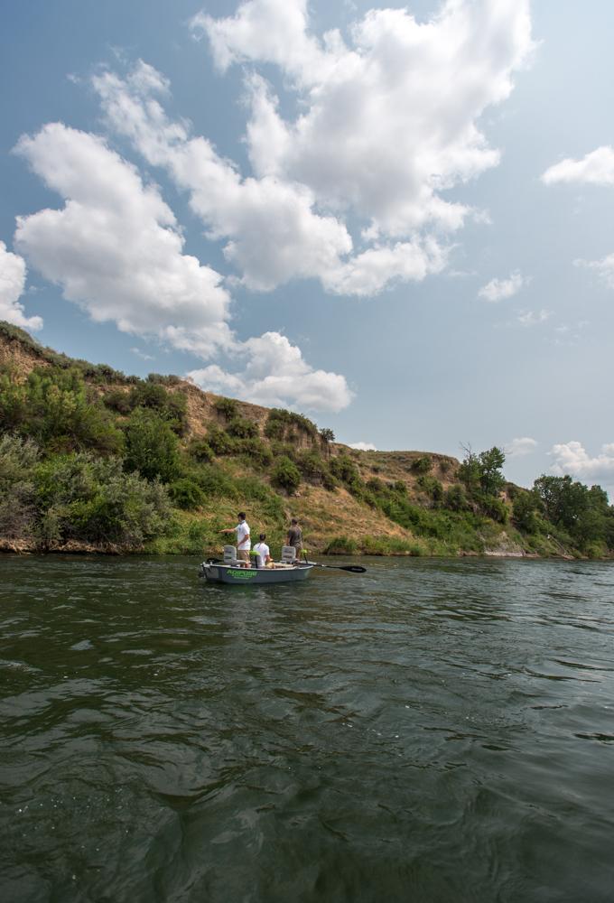 fly, fishing, montana, film, trout, wild, bighorn, river, adipose, driftboat