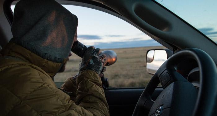 antelope, hunting, rifle, hunt, montana, wild