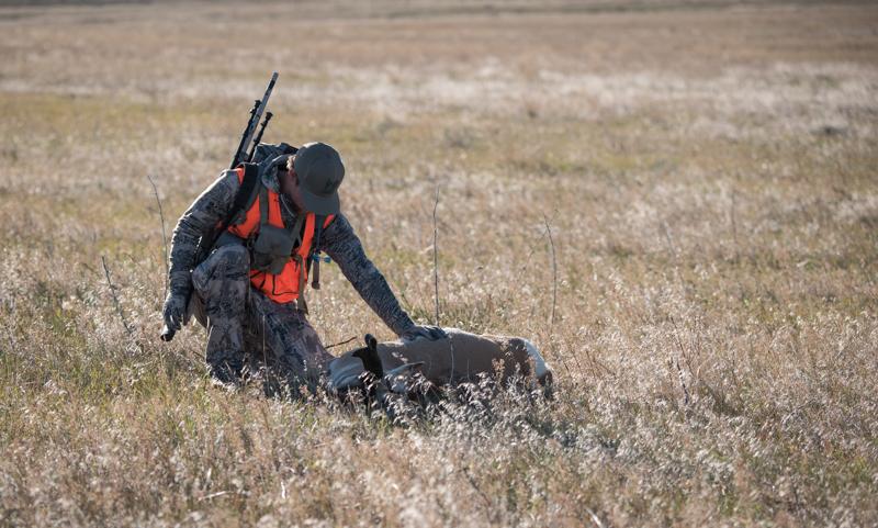 antelope hunting, antelope buck, montana antelope
