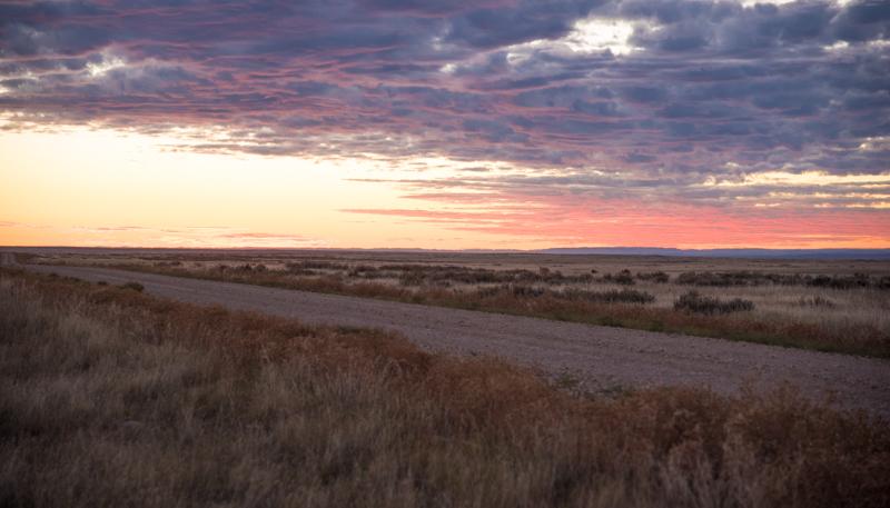 Montana sunrise, eastern mt, antelope hunting, speedgoat, hunt mt, montana antelope