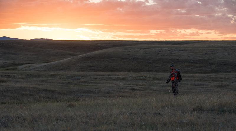 hunting montana sunset, best montana hunting hours, best antelope hunting, best antelope unit