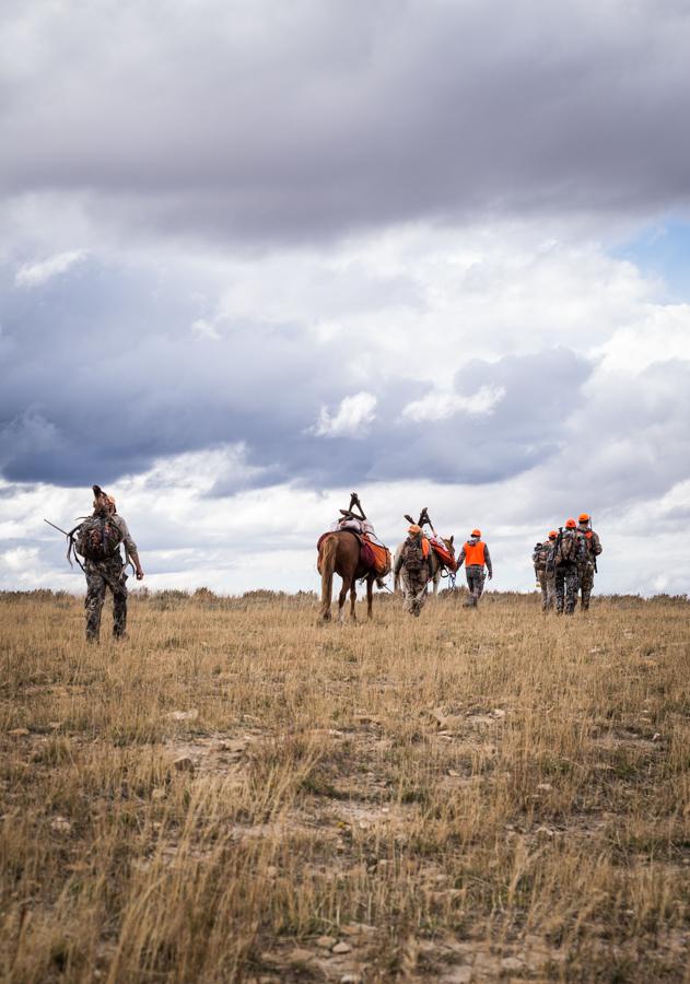 wall tents, hunting, elk hunting, hsm ammo, elk, bull, sitka gear