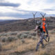 colorado, elk, rifle, hunting, sitka, gear