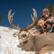 mule, deer, sitka, gear, mountain, buck