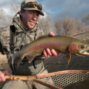 fly fishing, montana, rainbow trout