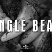 jungle bears, bear, hunt, idaho