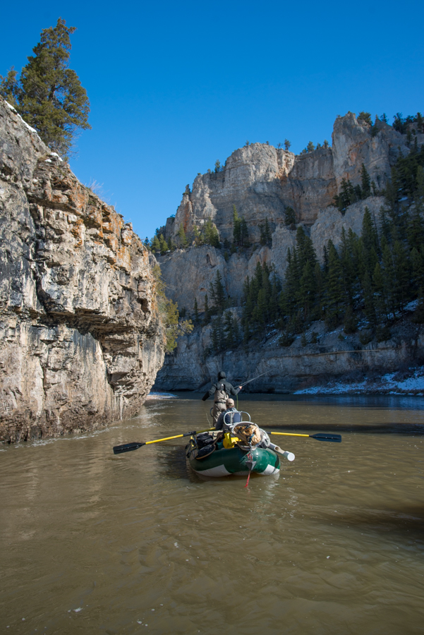 fishing, smith river, montana, trout, spring, floating, raft