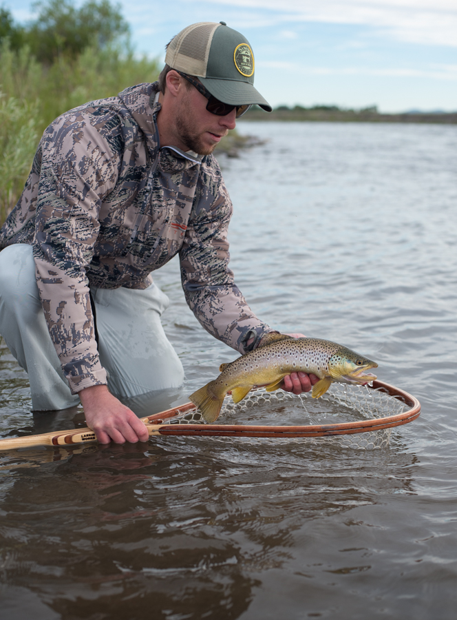 fly fishing, montana, salmonfly, hatch, wild, madison, river