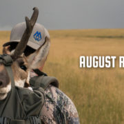 august, rush, film, antelope, speedgoat, pronghorn, montana, wild, video, rifle, hunt, hunting
