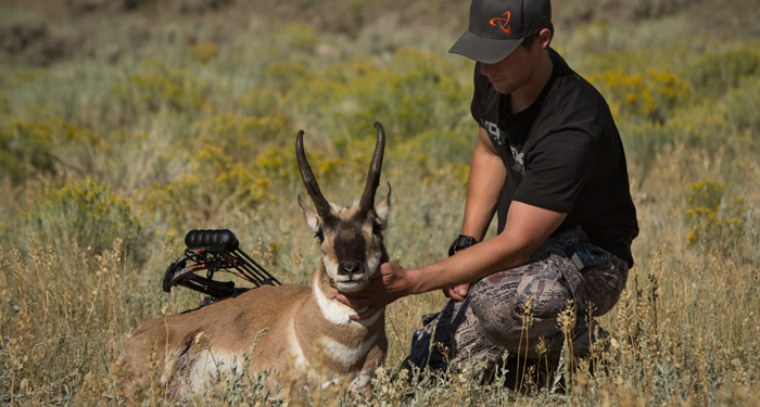 archery antelope hunting, montana, antelope, archery, bowhunting, film, video