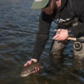 fishing, fly fishing, montana, bozeman, mt