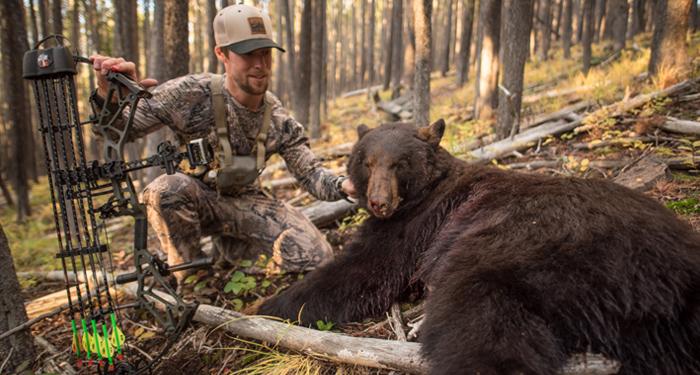 black, bear, story, archery, bowhunting, bowhunt, montana, wild