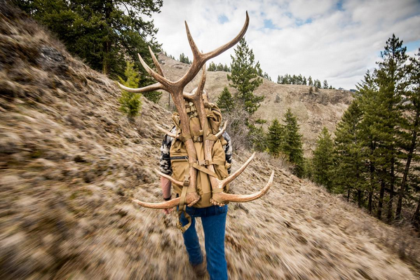 sam averett, photo, photographer, elk, sheds, washington, badass