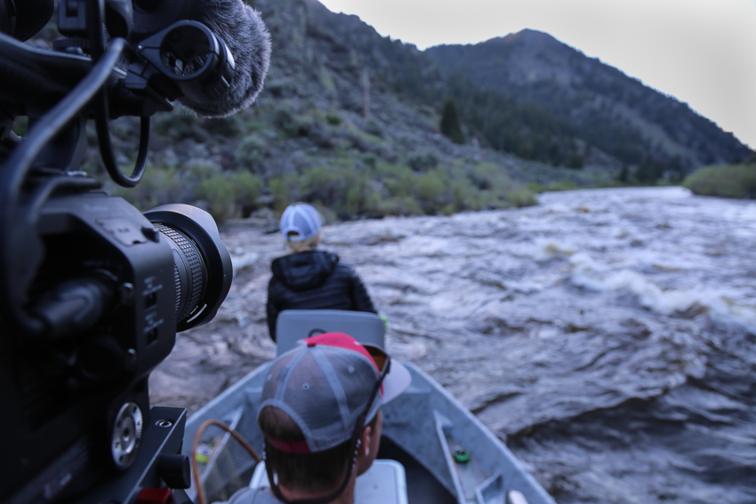 montana wild, fishing, internship, filming, summer