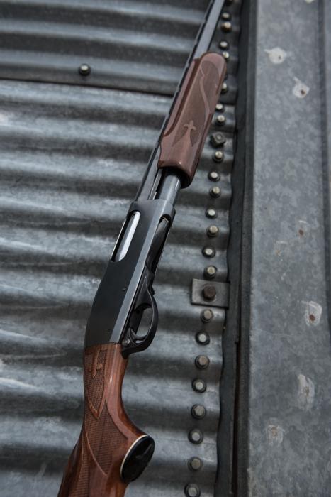 Remington, wingshooter, shotgun, upland, montana, pheasant, easter, wild, antelope, pronghorn