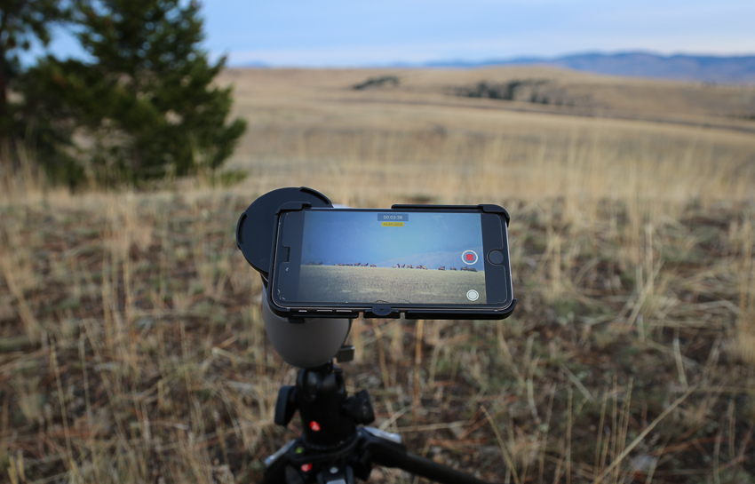 phoneskope, razor, hd, vortex, optics, elk, digiscoping