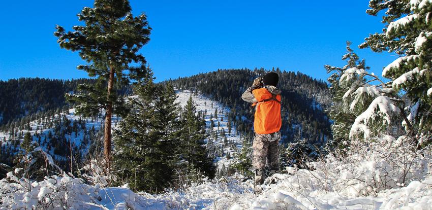 hunting snow, elk, hunt, western, montana