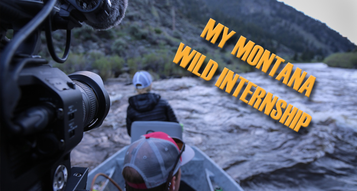internship, outdoor, photography, film, video