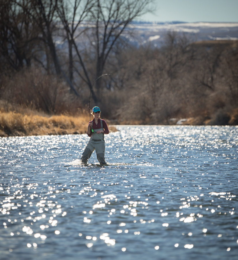 bighorn, river, montana, flyfishing, women, fish, hooked up, spring