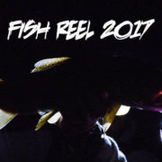 fish, reel, montana, wild, mousing, night, pink, mouse, yellow, brown, trout
