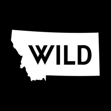 montana, wild, state, decal, bozeman, billings, hunt, fish, hunting, fishing