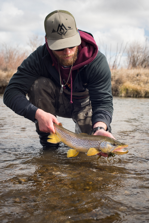 spring, fishing, montana, wild, brown trout, simms fishing