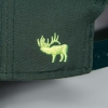 elk ridge, elk, snapback, montana, montana wild