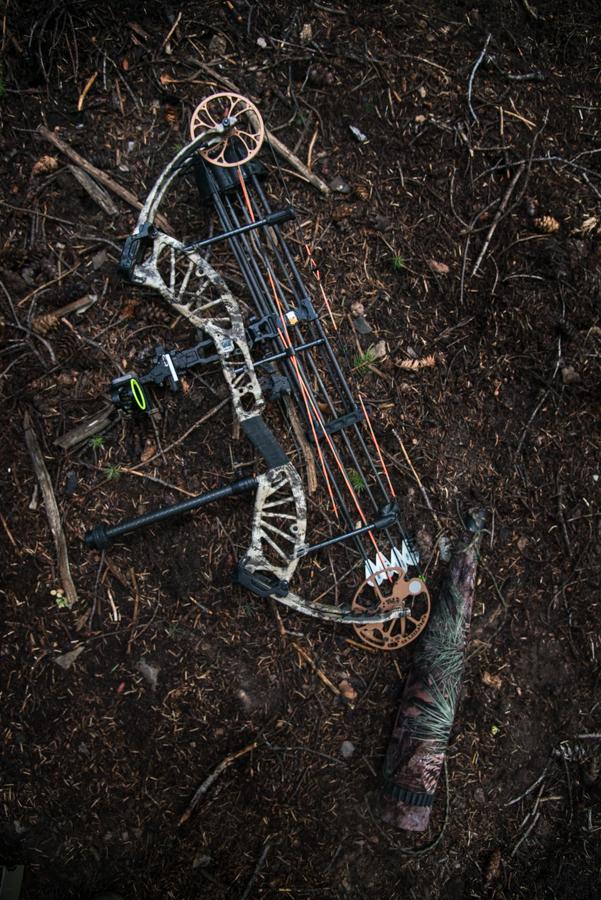 Bear Archery, Bear Approach, approach, archery, bow, hunting, elk