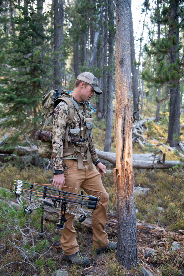 elk hunting, idaho, public land, archery, diy, bear archery
