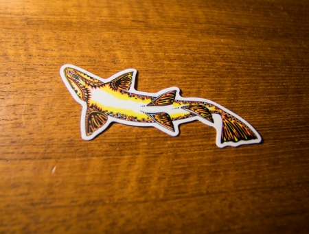 brown trout decal, bucknasty browns, fly fishing, fishing, montana brown trout, bozeman brown trout