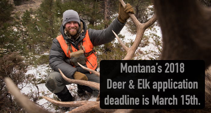 deer hunting, elk hunting, applications, March 15th, stoke, hunting, rifle hunting, bow hunting, applications, bull down, elk hunting, organic, meat, carnivore