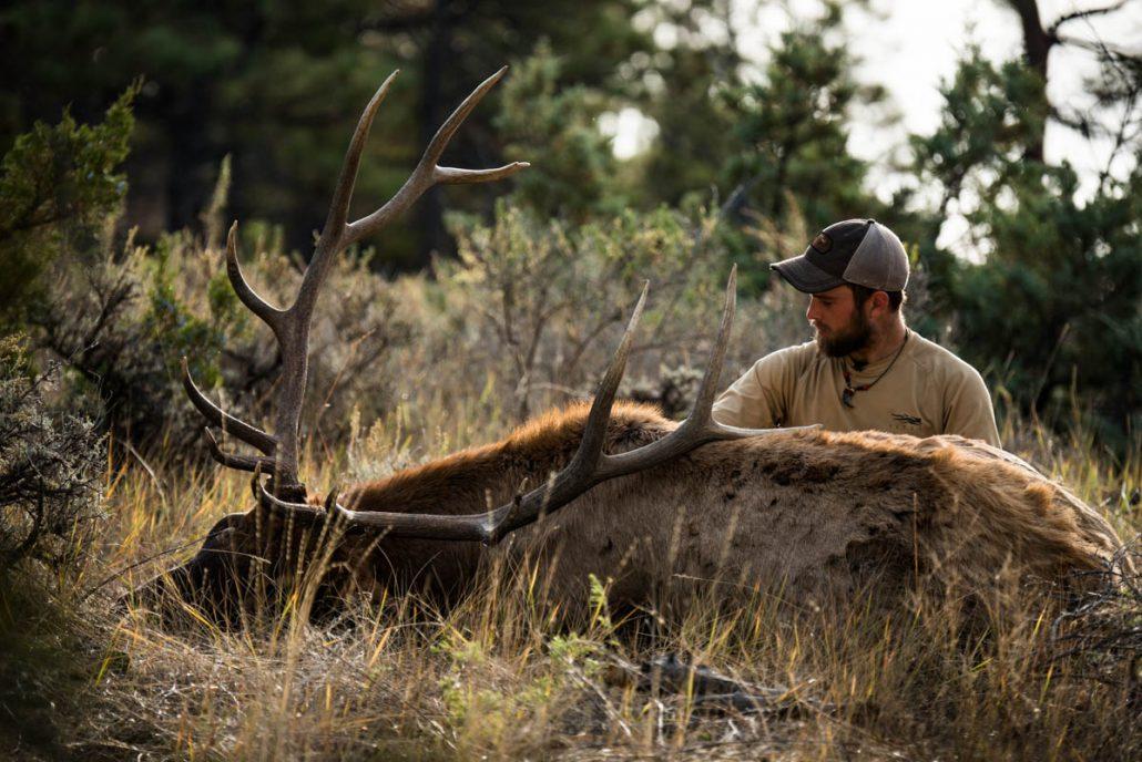 hunting, The Outlier Film, The Outlier, Hunting film, outdoor media, stoke, bull down, archery hunting, bull elk, filmmaking, outdoor film