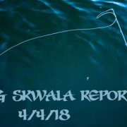 fishing, fly fishing, stoke, skwala, skywalk fishing, dry fly, brown trout, Montana Wild