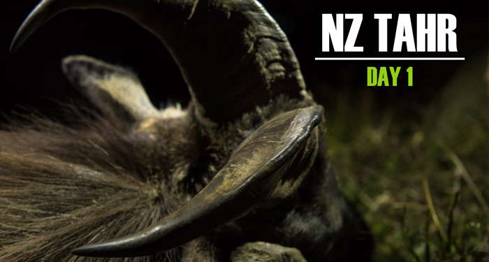new zealand tahr hunt, tahr hunting, nz, south island, free range, montana wild, film, video