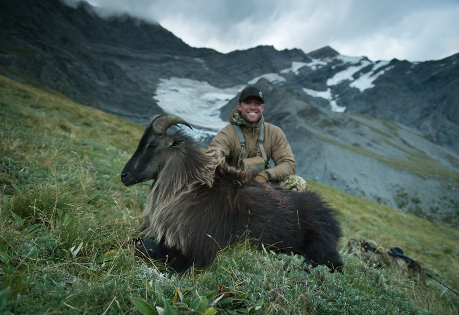 tahr hunting, nz tahr, tahr hunt new zealand, new zealand, hunting, nz, free range