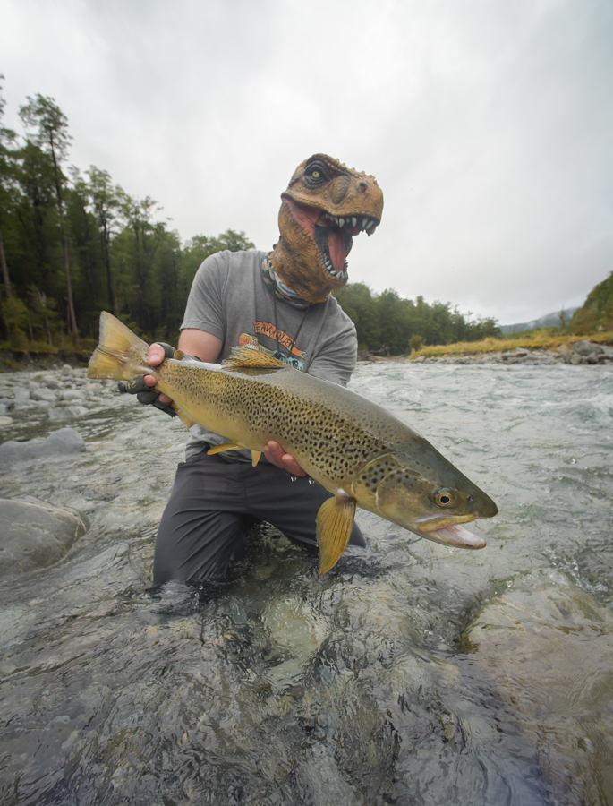 new zealand, fly fishing, diy, south island, montana wild, brown trout, dry fly, fishing, cicada, dinosaur