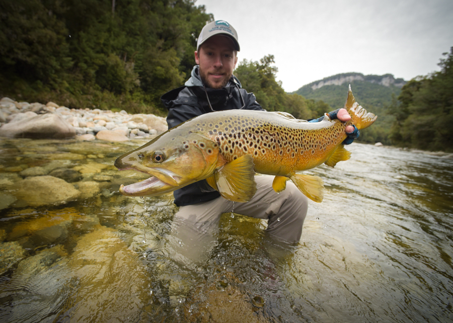 nz, new zealand, fly fishing, diy, backcountry, brown trout, south island, travis boughton